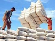 Le Vietnam a exporté 404.000 tonnes de riz en janvier