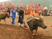 Hà Nam : ouverture de la fête Tich Dien