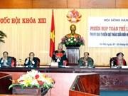 Constitution 1992 : le Conseil des ethnies se prononce