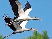 Sur la gestion durable du parc ornithologique de Bac Liêu