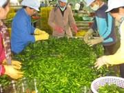 Opportunités pour les exportateurs de fruits et légumes
