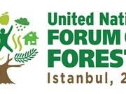 Opération main verte au Forum de l'ONU sur les forêts