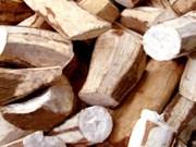 Objectif de deux milliards de dollars d'exportation de manioc