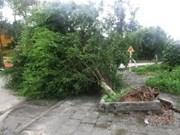 La tempête Jebi fait onze morts et blessés