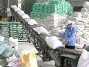 Can Tho modernise ses entrepôts de riz