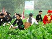 Prochain 2e festival international du thé de Thai Nguyên