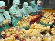 JETRO soutient l'exportation de produits agricoles vietnamiens au Japon