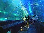 L'Aquarium du Parc Paradis de Bao Son