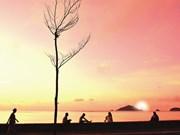 L'île de Côn Dao, un enfer devenu paradis