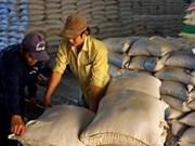 Riz : la VFA prévoit les exportations en 2014