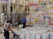 Exportations de 6,61 millions de tonnes de riz en 2013