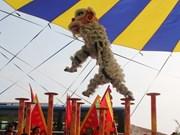 Premier concours des danses du dragon et de la licorne à Can Tho