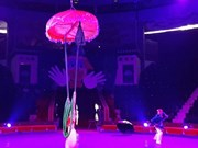Le Vietnam primé au Festival international du cirque