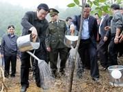 Le chef de l'État lance la fête de la plantation d'arbres