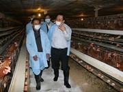 Grippe aviaire: le vice-PM Hoang Trung Hai inspecte Lang Son