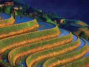 Les Mông, des architectes de la nature