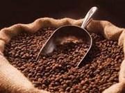 Le café de Dak Lak est commercialisé dans 60 pays et territoires