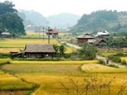 L'agriculture de Diên Biên trace le filon de la croissance durable