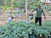La vie sur l'archipel de Truong Sa