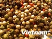Bonne progression des exportations de poivre