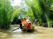À la découverte des maisons en palmier d'eau de Câm Thanh