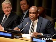 Mer Orientale : un responsable de l'ONU soutient l'option du Vietnam