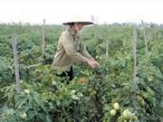 Vers un développement durable de l'agriculture