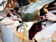 Réparation immédiate des navires revenant de Hoàng Sa