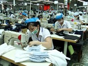 IDE : Binh Duong a déjà atteint son objectif annuel