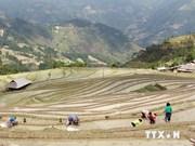 Approbation gouvernementale de deux projets dans la pauvreté et l'environnement