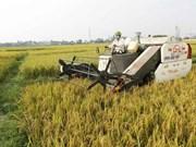 Forum d'affaires de l'agriculture Vietnam-Israël