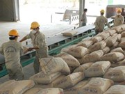 1er semestre: les exportations nationales de ciment en hausse de 10%