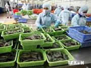 Ninh Thuan: inauguration d'une usine de transformation de crevettes