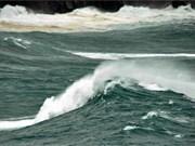 Face à la montée de la mer, le besoin se mue en solution