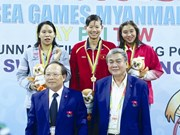 Aux Jeux olympiques d'été de la jeunesse, ils rêvent d'or