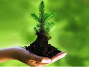 Pour une meilleure évaluation des impacts sur l'environnement