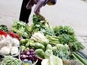 La Chine, grand débouché de fruits et légumes vietnamiens