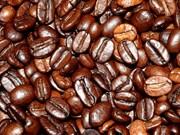 Dong Nai : le cours du café à l'export établit un record