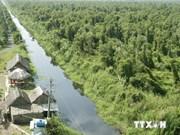 Des animaux sauvages rares trouvés dans la forêt d'U Minh Ha