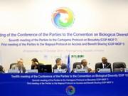 ASEAN: engagement dans la protection de la biodiversité