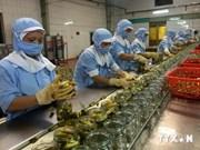Des produits agricoles, sylvicoles et aquatiques vietnamiens en Égypte