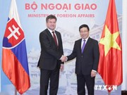 Vietnam et Slovaquie renforcent leur coopération