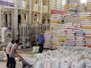 Delta du Mékong: forte hausse des exportations de riz de haute qualité