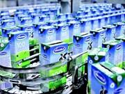 Entreprises puissantes: Vinamilk nommée dans le top 100 de l'ASEAN