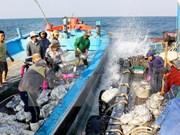 Vietnam-Chine : négociations sur la zone maritime à l'extérieur du golfe du Bac Bo