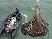 """Indonésie: deux """"grandes parties"""" de l'avion d'AirAsia retrouvées au fond de la mer"""