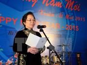 Tet : rencontre des corps diplomatiques et ONG étrangères à Hanoi