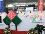 De nombreux investisseurs étrangers «chassent» les opportunités au Vietnam