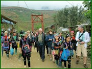 Lào Cai : tourisme communautaire dans les villages