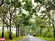 Découvrir le parc national d'U Minh Thuong